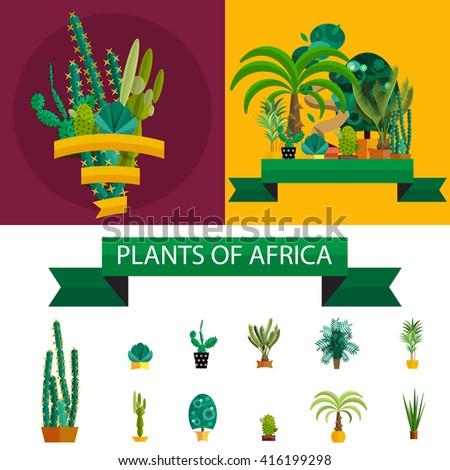 Africa plants. Africa plants trees, Africa plants flowers, Africa plants green, Africa plants white, Africa plants background, Africa plants outdoor, Africa plants isolated, Africa plants tree - stock vector