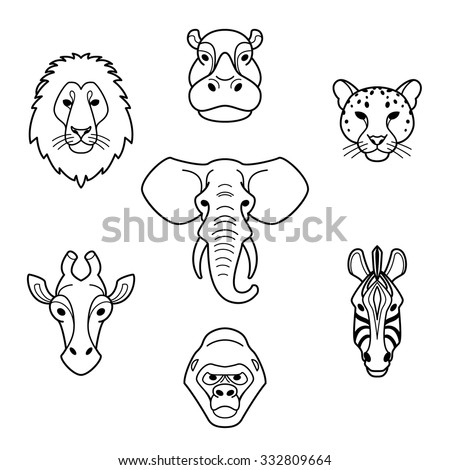 gorilla face stock images, royalty-free images & vectors ... - Silverback Gorilla Coloring Pages