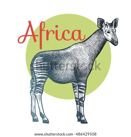 Maned wolf hand drawing animals south stock vector for Okapi coloring page