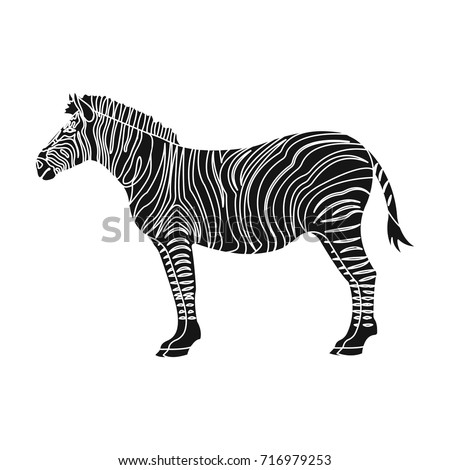 African, desert zebra. Wild cloven-hoofed animal, zebra single icon in black style vector symbol stock illustration web.