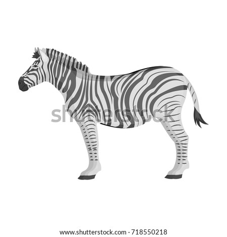 African, desert zebra. Wild cloven-hoofed animal, zebra single icon in monochrome style vector symbol stock illustration web.