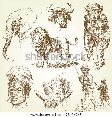 african wild animals - stock vector