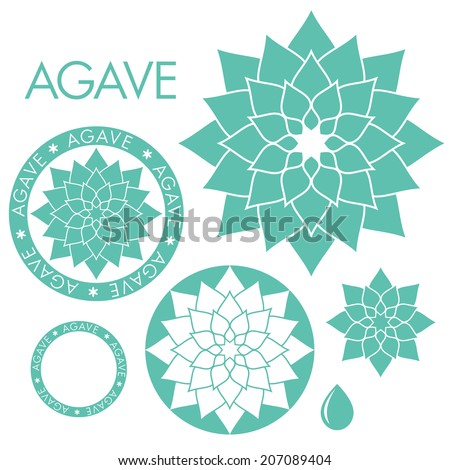 Agave Stock Images Royalty Free Images Amp Vectors Shutterstock