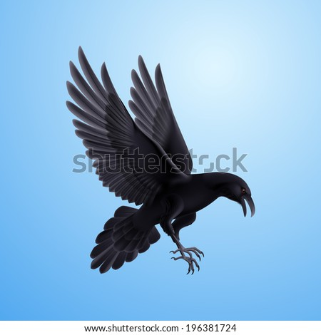 Aggressive black raven. Illustration on blue sky background  - stock vector