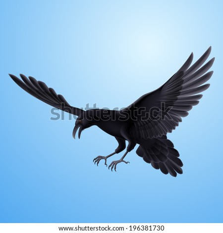 Aggressive flying raven on blue sky background  - stock vector