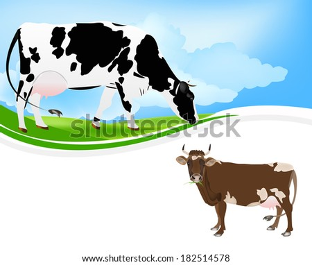 Agriculture.Breeding Dairy Cattle.Vector  - stock vector