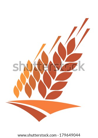 Agriculture icon with a field of golden ripe ears of wheat logo providing a staple dietary grain and animal feed, vector illustration isolated on white - stock vector