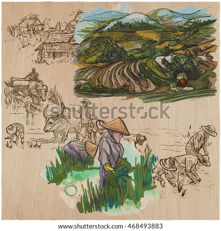 Agriculture - Life of a farmer. RICE CROP. Collection of hand drawn vector illustrations. Set of freehand sketches. Colored. Line art technique.