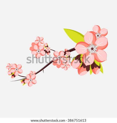 almond or apricot branch in blossom. Vector illustration