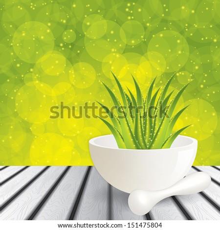 Aloe Vera.Alternative medicine  - stock vector