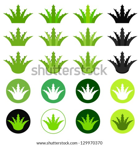 Aloe vera collection or set vector labels - stock vector