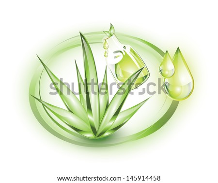 Aloe vera plant with extract, EPS 10, isolated - stock vector