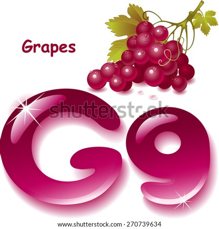 Alphabet. English capital and uppercase letter G, stylized color of grapes juice. bunch grapes with leaf. vector illustration - stock vector