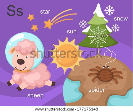 Alphabet.S letter.star,sun,sheep,spider,snow - stock vector