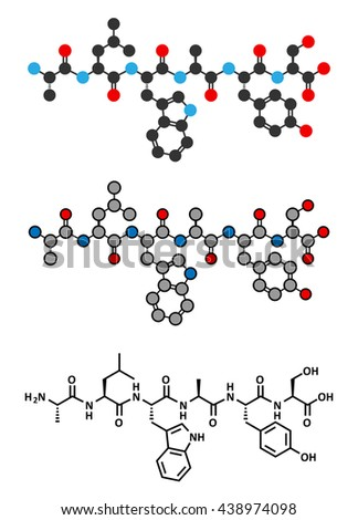 ALWAYS peptide. Oligopeptide with sequence A-L-W-A-Y-S (Ala-Leu-Trp-Ala-Tyr-Ser). Stylized 2D renderings and conventional skeletal formula. - stock vector