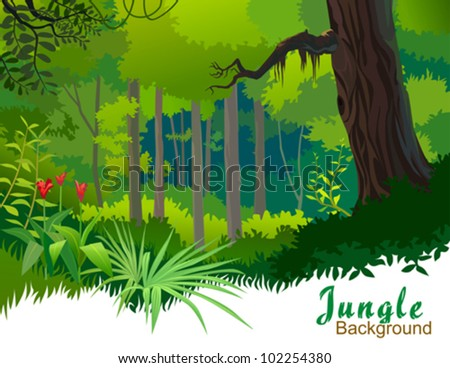 AMAZON JUNGLE TREES AND WILDERNESS - stock vector