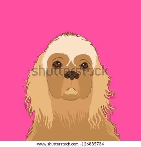 American cocker spaniel, The buddy dog - stock vector