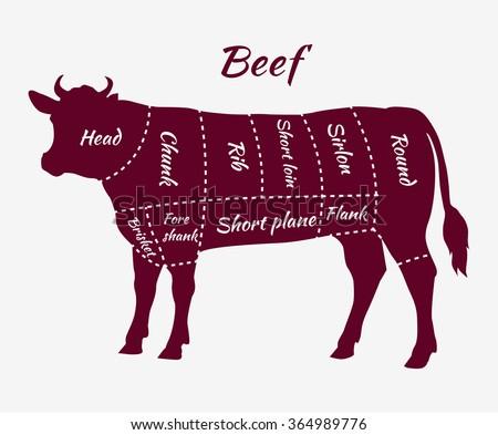 American Cuts Beef Scheme Beef Cuts Stock Vector 364989776