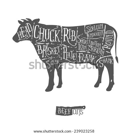 American cuts of beef, vintage typographic hand-drawn butcher cuts scheme - stock vector