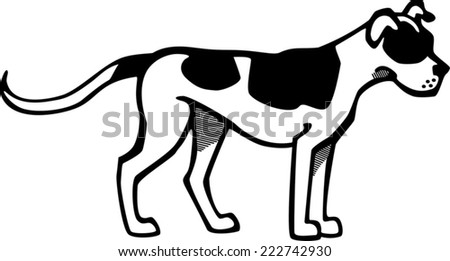 American bulldog vector - photo#15