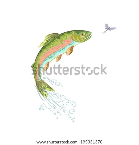 American trout jumps vector ilustration
