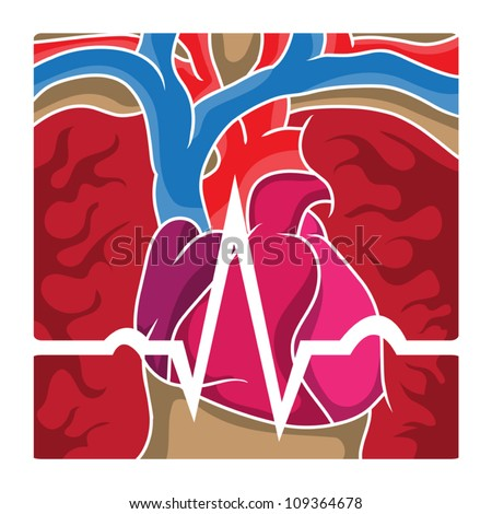 An ECG wave going over the chest cavity containing the heart, lungs and blood vessels. - stock vector