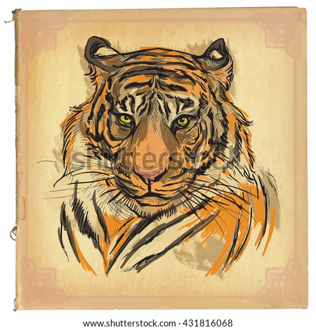 An hand drawn retro vector illustration, colored line art. Freehand sketch of Tiger head.Hand drawing is editable in layers and groups.Background is isolated.Vintage processing on old paper background - stock vector