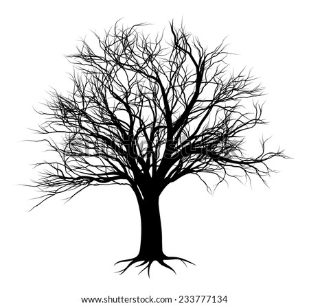 An illustration of a bare tree in silhouette - stock vector