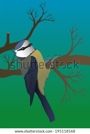 An illustration of a blue tit hanging on a branch