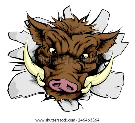 An illustration of a Boar charging through a wall - stock vector