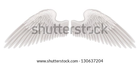 An illustration of a pair of beautiful white spread wings. - stock vector