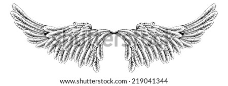 An illustration of a pair of wings like angel or eagle wings - stock vector
