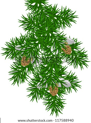 An illustration of a snowy pine branch - stock vector
