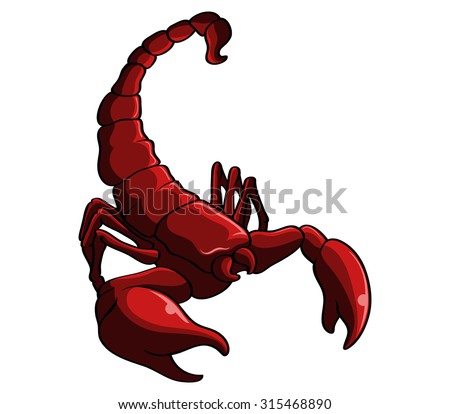 red scorpion stock images royaltyfree images amp vectors