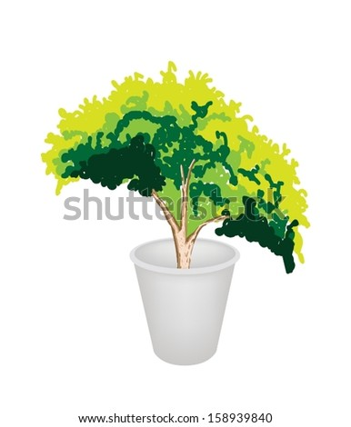 An Illustration of Beautiful Green Plant in A Flowerpot for Garden Decoration