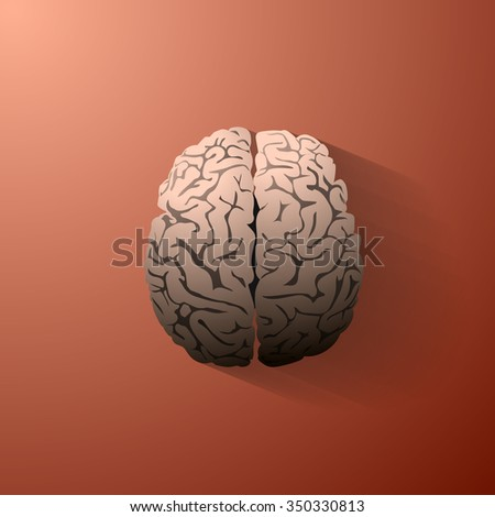 An illustration of the human brain. Vector eps10