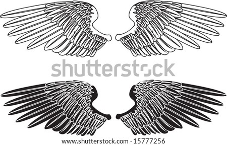 An illustration of two pairs of outstretched wings - stock vector