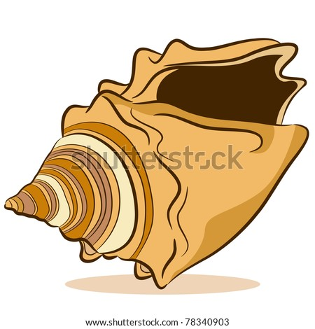 Shell cartoon Stock Photos, Images, & Pictures | Shutterstock