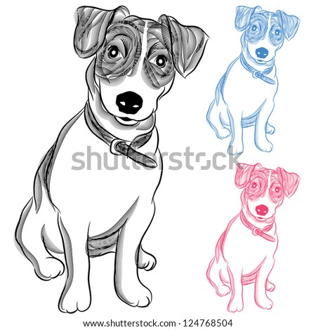 An image of an Irish Jack Russell Terrier dog. - stock vector