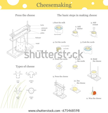 the parmesan dairy product earning operation essay