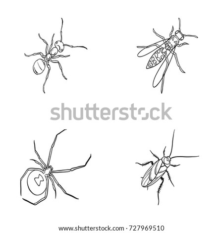 86 arthropod coloring pages 3 crab coloring page for kids click the brown recluse spider. Black Bedroom Furniture Sets. Home Design Ideas