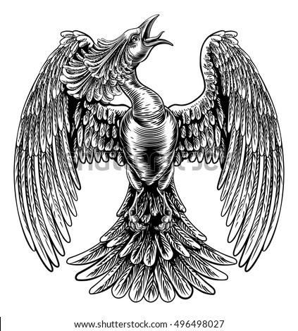 Phoenix bird stock images royalty free images vectors for Thin line tattoo artists near me