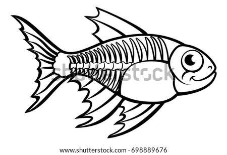 x ray tetra fish animal cartoon stock vector 698889676