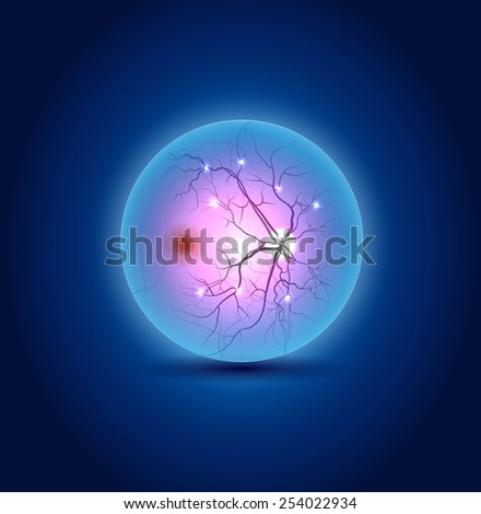 Anatomy of the interior surface of the eye, beautiful blue design - stock vector