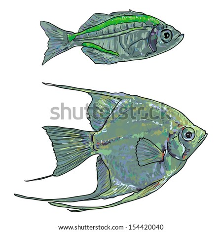 salmon fish vector isolated on white stock vector 241373056 shutterstock. Black Bedroom Furniture Sets. Home Design Ideas