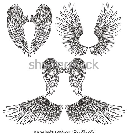 Angel Wings Stock Images Royalty-Free Images U0026 Vectors | Shutterstock