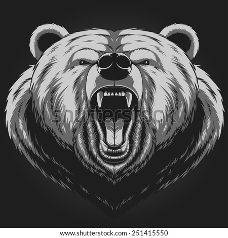 Angry bear head mascot - stock vector