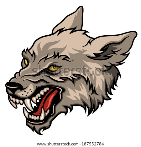 Angry wolf head, colorful vector illustration isolated on white  - stock vector