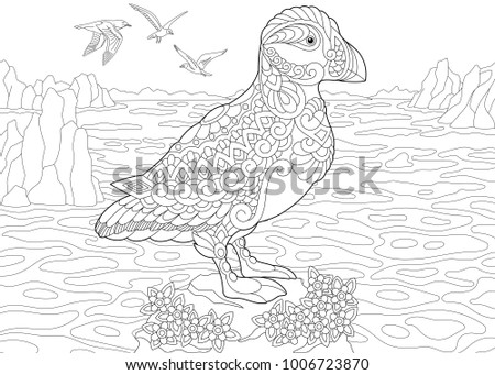Animal Coloring Page. Adult Coloring Book. Puffin, A Hole Nesting Auk (