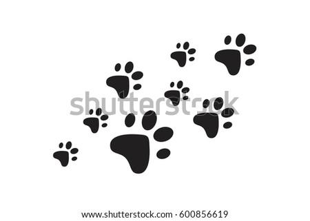 Animal Paw Dog Foot Print Wallpaper